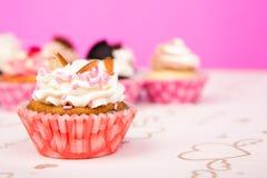 Birthday cupcakes. Stock Image