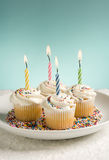 Birthday Cupcakes with Colored Candles Royalty Free Stock Photo