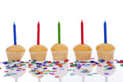 Birthday cupcakes in a row Stock Image