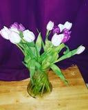 Birthday Flowers stock image