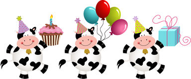 Birthday funny cows Stock Image