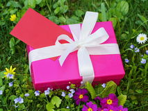 Birthday gift box Royalty Free Stock Photos