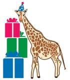 Birthday Giraffe Stock Photo
