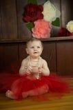Birthday Girl Portraits Royalty Free Stock Image