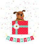 Birthday greeting card with dog. Gift box and bouncing flags garland, vector illustration Stock Photos