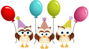 Birthday owls with balloons Royalty Free Stock Photography