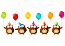 Birthday owls Stock Photo
