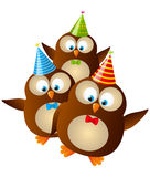 Birthday owls Royalty Free Stock Photography