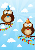 Birthday owls Royalty Free Stock Images