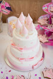 Birthday party and cake Royalty Free Stock Photo