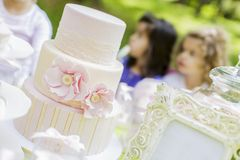 Birthday party. Close view at the cake at the birthday party royalty free stock images