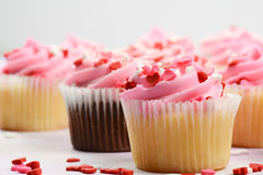Birthday Party Cupcakes Stock Photography