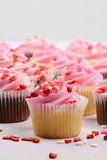 Birthday Party Cupcakes Royalty Free Stock Images