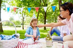 Birthday picnic in park royalty free stock image