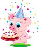 Birthday_pig Stock Image
