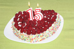 Birthday raspberry cake Royalty Free Stock Photos