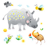 Birthday rhinoceros Royalty Free Stock Photos