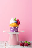 Birthday vanilla cupcakes with fresh raspberries. Delicious birthday vanilla cupcake with fresh raspberries, cream and mint on a pink background, selective focus Stock Photography