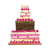 Birthday or wedding cake.Vector illustration Stock Photos
