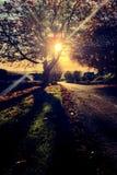 Birtley wioska w Northumberland, Anglia Zdjęcia Royalty Free