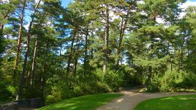 Biruta Park in Palanga. One of the oldest and most popular botan. Ical gardens in Europe and Lithuania has nautral coastal vegetation Royalty Free Stock Image