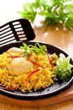 Biryani цыпленка стоковая фотография