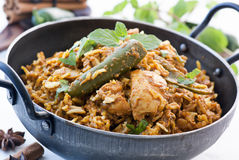 Biryani Royalty Free Stock Photo