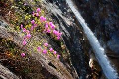 Biryong Falls watrefall royalty free stock photography