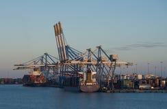 BIRZEBUGGA, Malta-pode 2: porto da carga em Birzebugga, Malta, vista panorâmica do amanhecer do porto da carga o 2 de maio de 201 Imagens de Stock