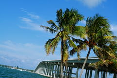 biscayne关键迈阿密 免版税库存图片