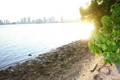 Biscayne Bay. Beautiful Sunset over Biscayne Bay Miami FL Stock Images