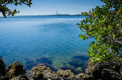 Biscayne Bay - Biscayne National Park - Florida. View of Turkey Point Power Station from the shoreline at Biscayne National Park in the northern Florida Keys royalty free stock photography