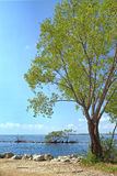 Biscayne National Park - 1 royalty free stock image
