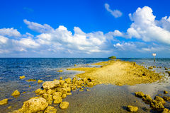 Biscayne National Park. Beautiful Biscayne National Park vista from Black Creek Trail stock photography