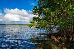 Biscayne nationalpark royaltyfri fotografi