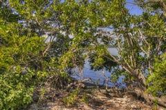 Biscayne nationalpark, södra Florida arkivfoto