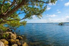 Biscayne park narodowy Fotografia Royalty Free