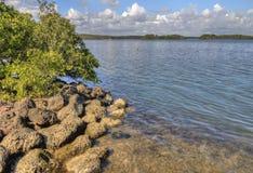 Biscayne park narodowy, Południowy Floryda Zdjęcia Royalty Free