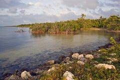 biscaynenationalpark royaltyfria bilder