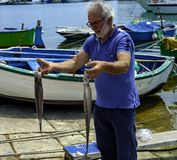 Fisherman caught an octopus in the sea and beats him. Bisceglie - Italy. June 2, 2017: Fisherman caught an octopus in the sea and beats him on the asphalt to royalty free stock photos