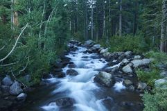 Bischop Creek, Oostelijke Siërra, CA stock afbeelding
