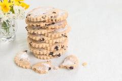 bisciuts di pasqua del ribes in pila con un biscotto rotto nella parte anteriore Fotografia Stock Libera da Diritti
