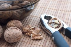 Biscoito da porca com nozes   Fotografia de Stock