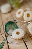 Biscoito de Linz com doce de fruta do pêssego com um vidro do leite nos vagabundos Foto de Stock
