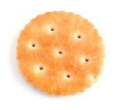 Biscoito do bolinho Imagens de Stock