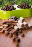 Biscoitos coloridos saborosos do cão no fundo de madeira imagens de stock