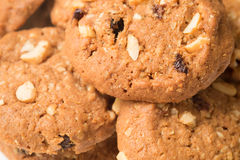 Biscoitos da farinha de aveia e de passa Fotografia de Stock