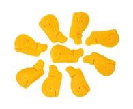Biscoitos dados forma baleia do queijo Imagem de Stock