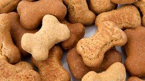 Biscoitos de cão Foto de Stock