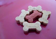 Biscoitos de cão dados forma osso usados como deleites imagem de stock royalty free